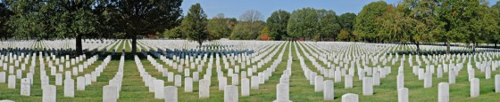 ARLINGTON IMAGE FOR HISTORY BY THE NUMBERS